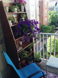 Growing Herbs and Plants on Jersey City Porch