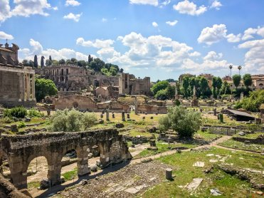 Free View of the Forum