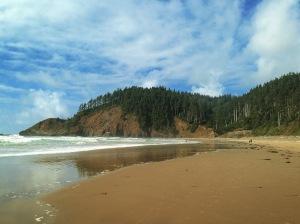 Empty Shore Invite Leisure Strolls