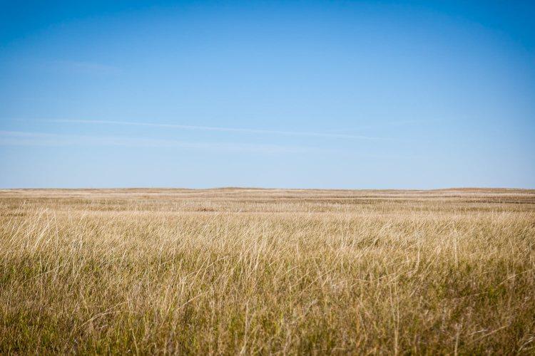 Mixed-Grass Prairie Badlands