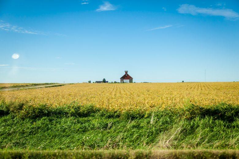 Iowa In My Window