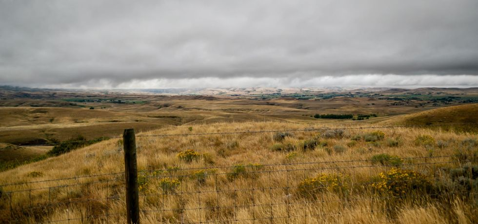 Bozeman Trail Wyoming