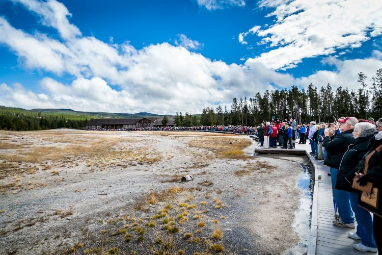 Crowds Waiting for Old Faithful to Blow