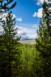 Overlook on the Downward Slope