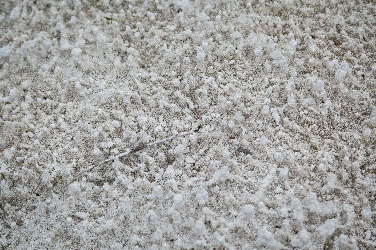 Limestone Buildup
