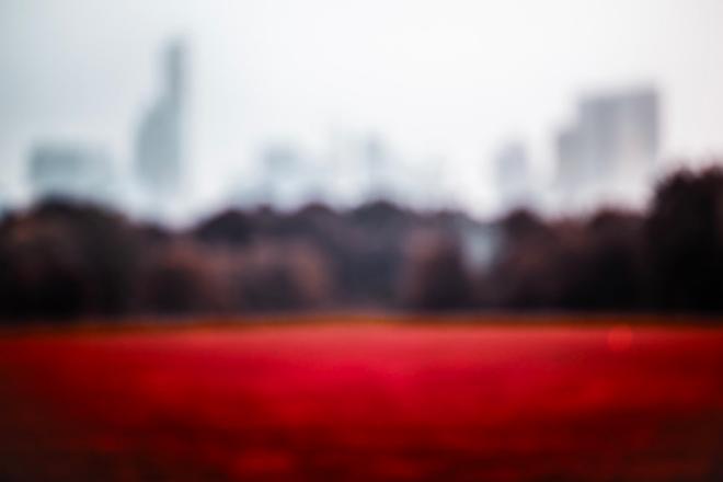 Crimson Lawn by Paolo Ferraris Colors