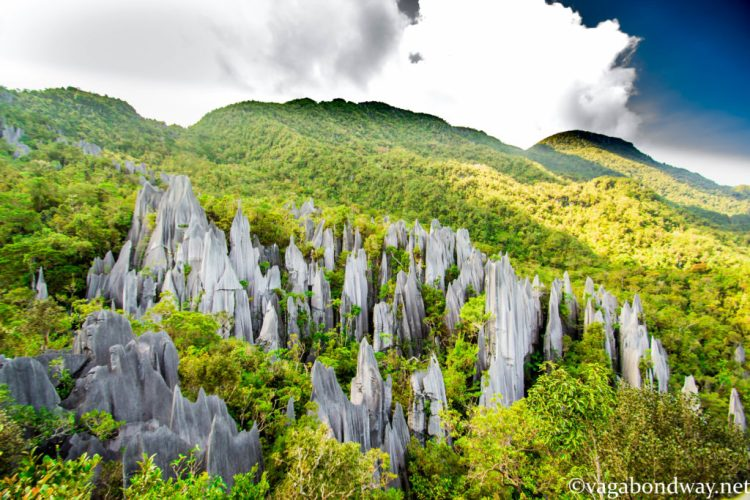 Pinnacles Malaysia From Tiff & Chris of Vagabond Way