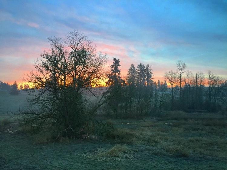 Sunrise View for ALOR