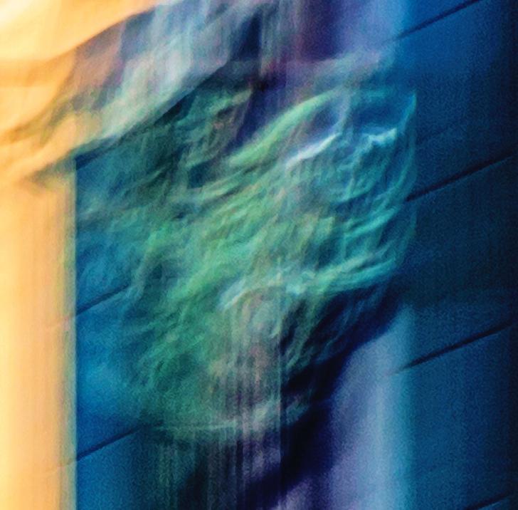 Ghoul in Cannaregio by Paolo Ferraris