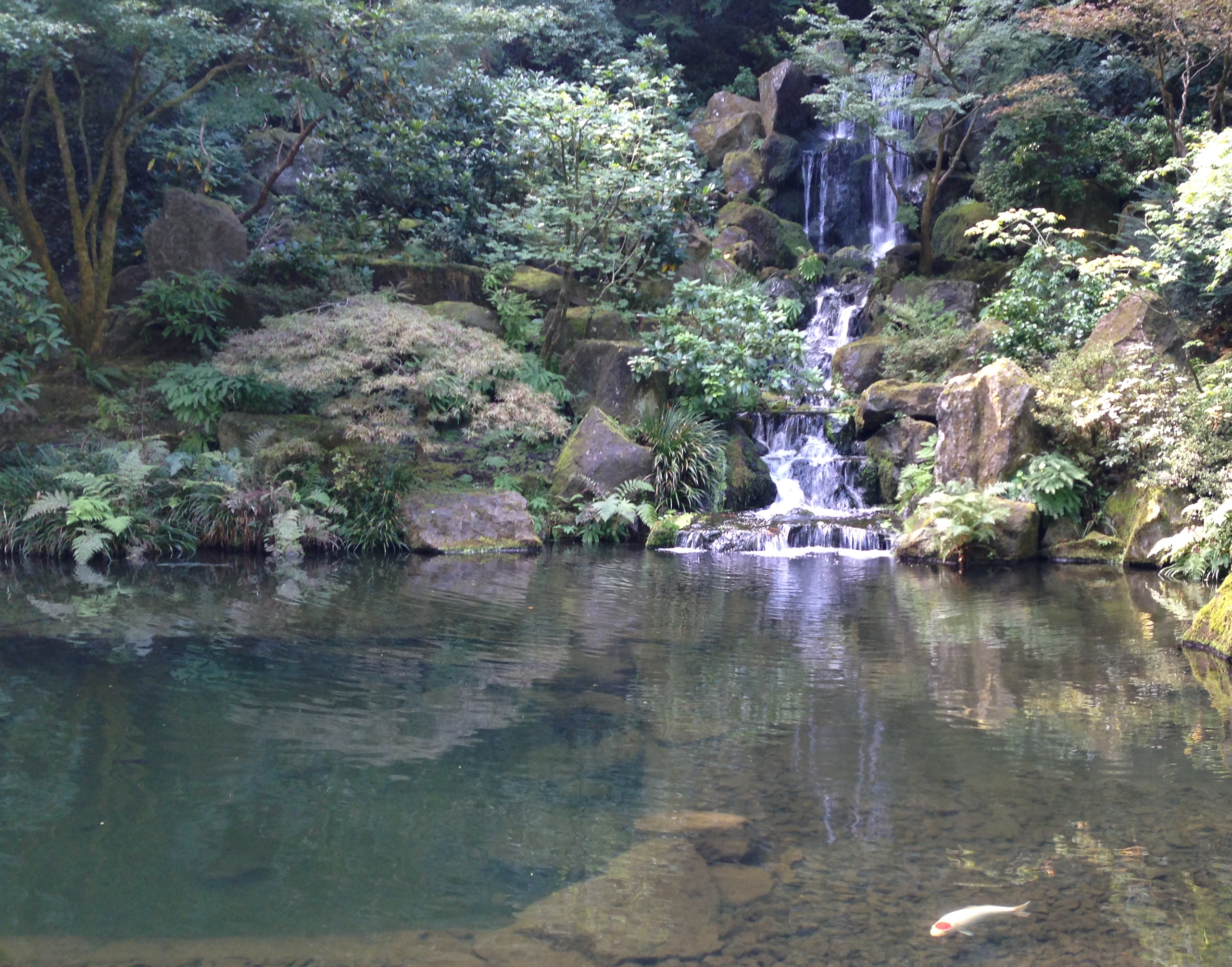 Waterfall in Japanese Garden