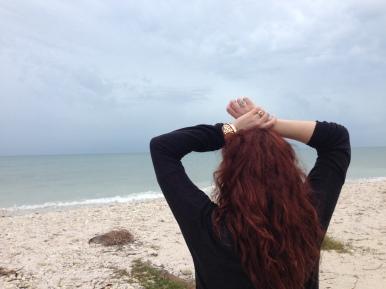 Honeymoon Island State Park Florida