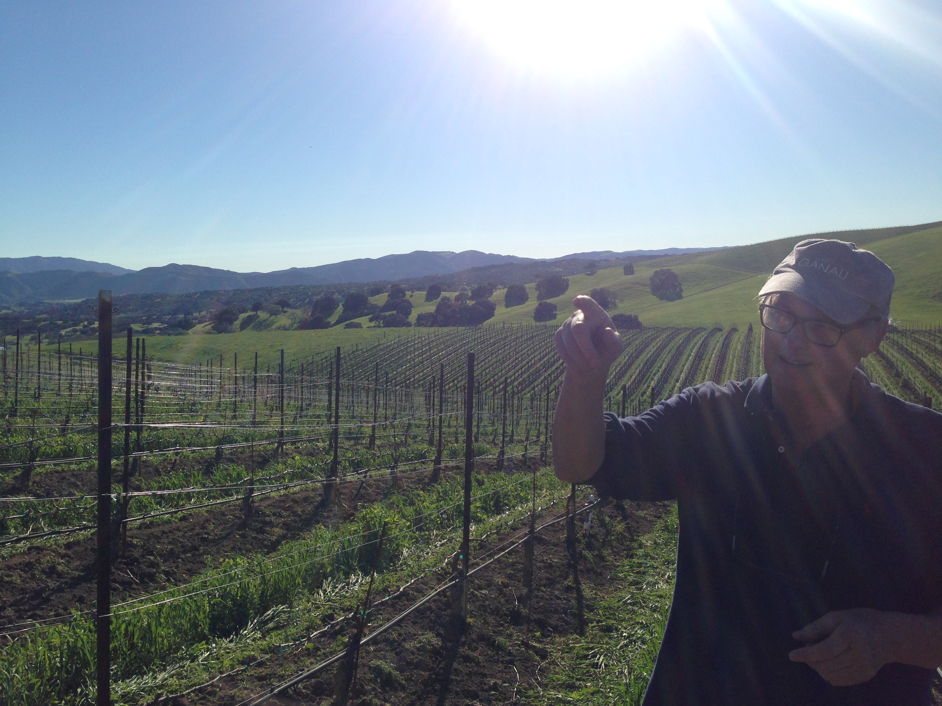 Roger Loves and Cares for Harrison Clarke Vineyard