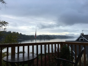 View from Bainbridge Island Balcony