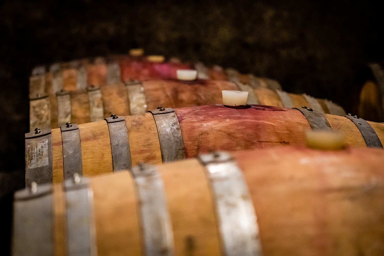 Wine Barrels at Sottimano Wines