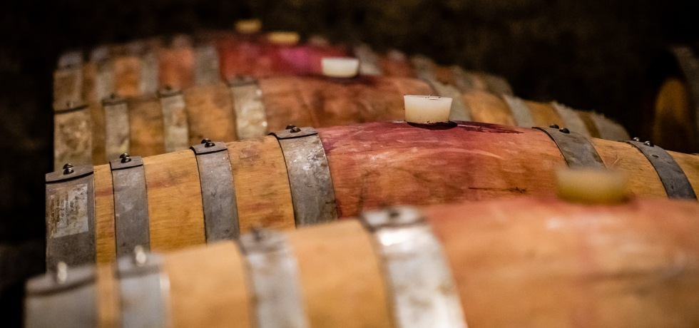 Wine Barrels at Sottimano Wines
