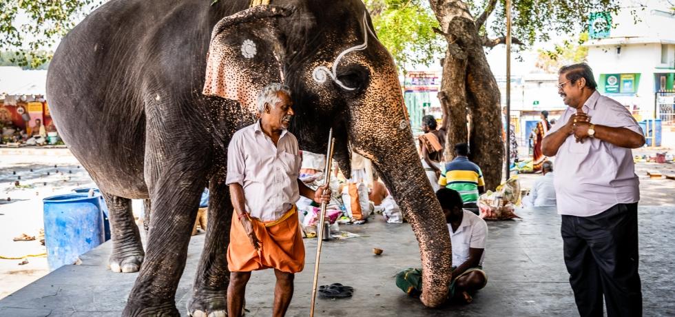 Travel India to Amma Mandapam Ritual Center