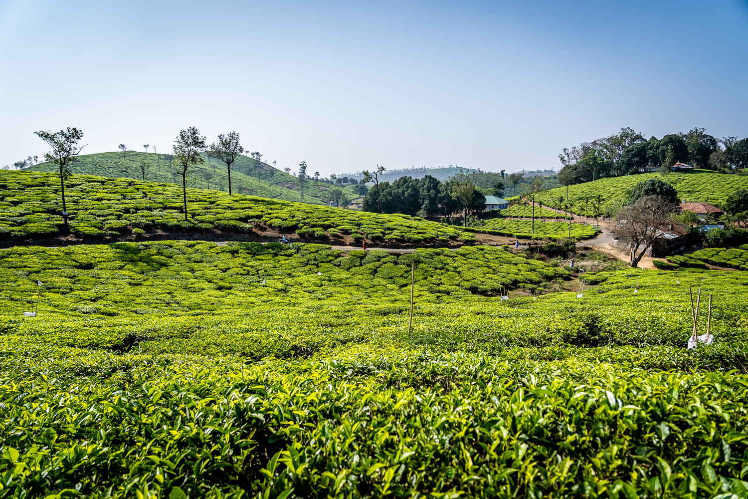 Travel India Kerala Tourist Places With Pictures