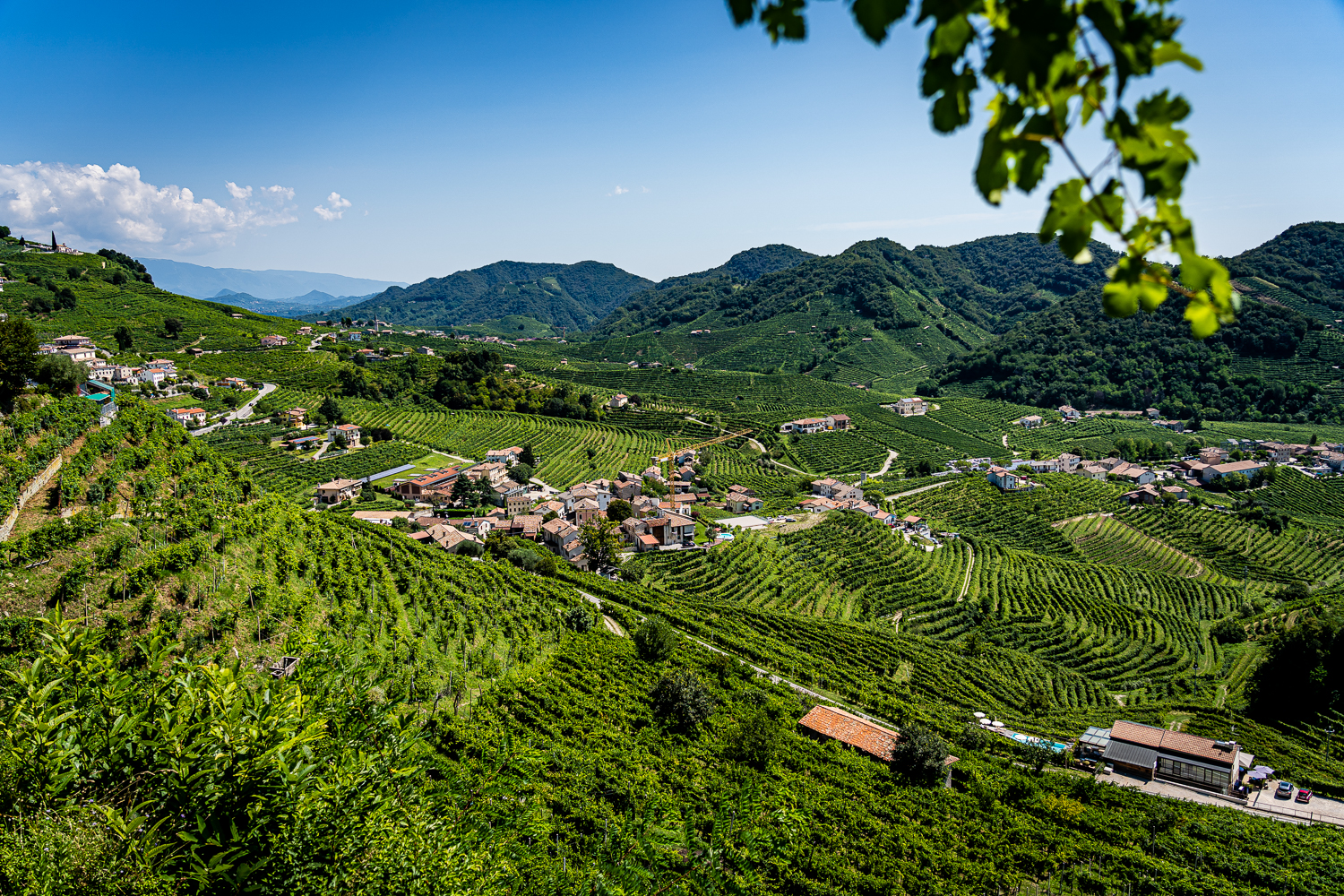 Italy Pic of the Day Prosecco UNESCO