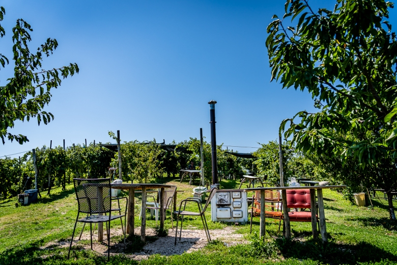 Italy Pic of the Day Rustic Picnic Spot in Wine Country