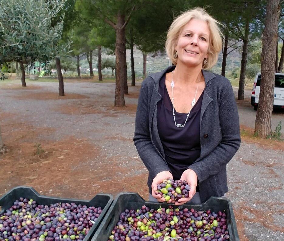 Italian Citizenship Through Grandparents Olive Harvest
